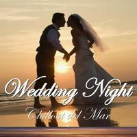 Various Artists - Wedding Night Chillout del Mar