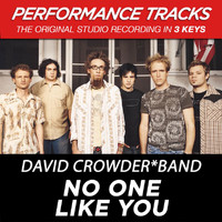 David Crowder*Band - No One Like You (Performance Tracks) - EP