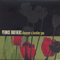 Pernice Brothers - Discover A Lovelier You
