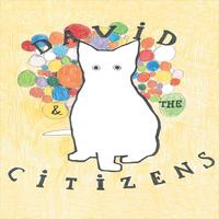 David & The Citizens - 1999 – 2005