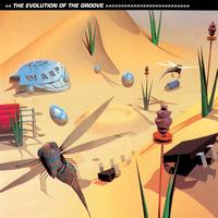 Various Artists - The Evolution Of The Groove
