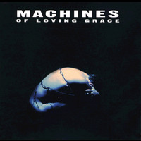 Machines of Loving Grace - Concentration