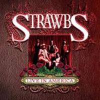 The Strawbs - Live In America