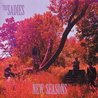 The Sadies - New Seasons