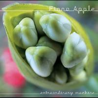 Fiona Apple - iTunes Originals