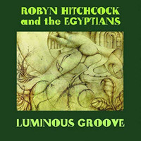 Robyn Hitchcock - Luminous Groove