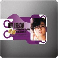 Sandy Lam - Steel Box Collection - Sandy Lam