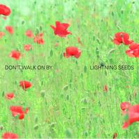 Lightning Seeds - Don't Walk On By
