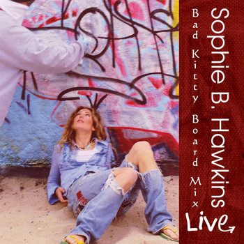 Sophie B. Hawkins - Bad Kitty Board Mix (Live)