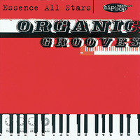 The Essence All Stars - Organic Grooves