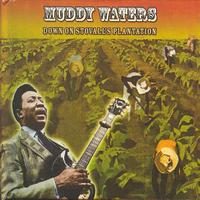 Muddy Waters - Down On Stovall's Plantation