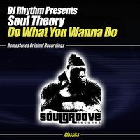 DJ Rhythm Presents Soul Theory - Do What You Wanna Do