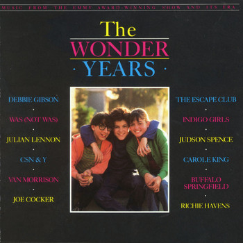 Various Artists - The Wonder Years