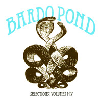 Bardo Pond - Selections: Volumes 1-4