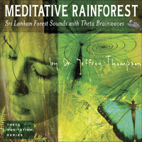 Dr. Jeffrey Thompson - Meditative Rainforest