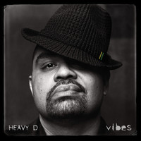 Heavy D - Vibes