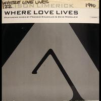 Alison Limerick - Dance Vault Mixes - Where Love Lives