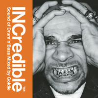 Goldie - INCredible Sound of Drum'n'Bass Mixed by Goldie (Album Version)