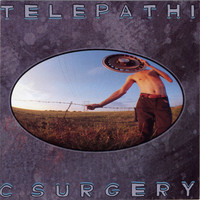 The Flaming Lips - Telepathic Surgery (Explicit)