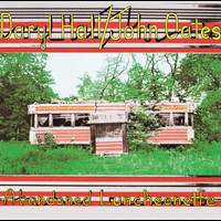 Daryl Hall & John Oates - Abandoned Luncheonette
