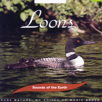 Sounds Of The Earth - Loons