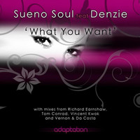 Sueno Soul - What You Want