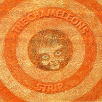 The Chameleons - Strip