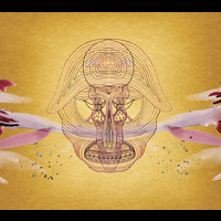 Devendra Banhart - What Will We Be (Standard)