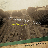 Robyn Hitchcock - I Often Dream of Trains in New York