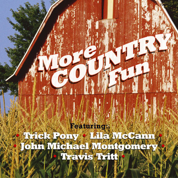 More Country Fun - More Country Fun