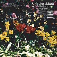 Luke Abbott - Whitebox Stereo