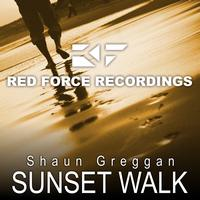 Shaun Greggan - Sunset Walk