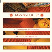 Dawnseekers - Shaman's Wake Up