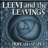 Leevi and the leavings - Hopeahääpäivä