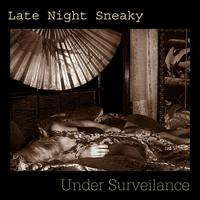 Late Night Sneaky - Under Surveilance