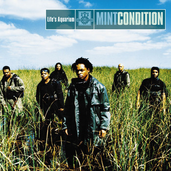 Mint Condition - Life's Aquarium