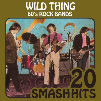Various Artists - 60's Rock Bands - Wild Thing