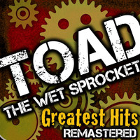 Toad The Wet Sprocket - Greatest Hits
