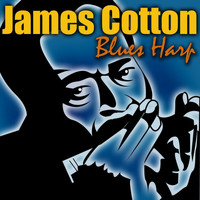 James Cotton - Blues Harp