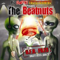 The Beatnuts - U.F.O. Files