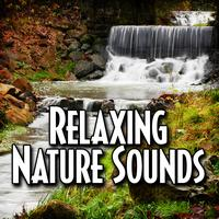 Relax Meditate Sleep - Relaxing Nature Sounds