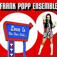 The Frank Popp Ensemble - Love Is On Our Side