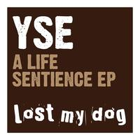 YSE - A Life Sentience EP