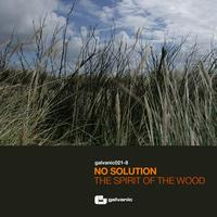 No Solution - The Spirit Of The Wood