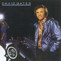 David Gates - Falling In Love Again