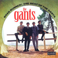The Gants - Road Runner! The Best Of The Gants