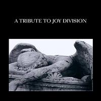 The Insurgency - A Tribute to Joy Division