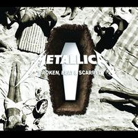 Metallica - Broken, Beat & Scarred (Vingle)