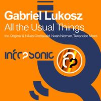Gabriel Lukosz - All the Usual Things