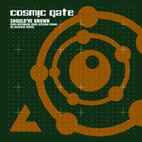 Cosmic Gate - Should've Known